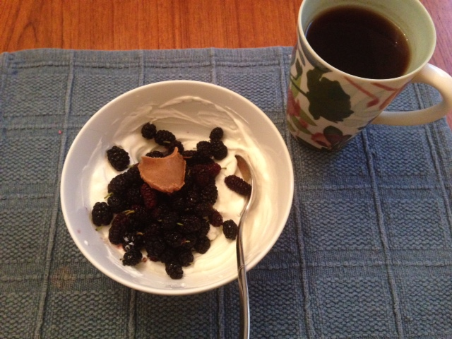 Breakfast of greek yogurt and mulberries... all my mulberries are gone and I am now in a deep depression...
