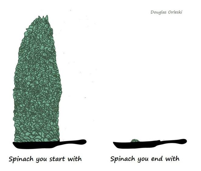 Doug-Orleski-spinach-cartoon